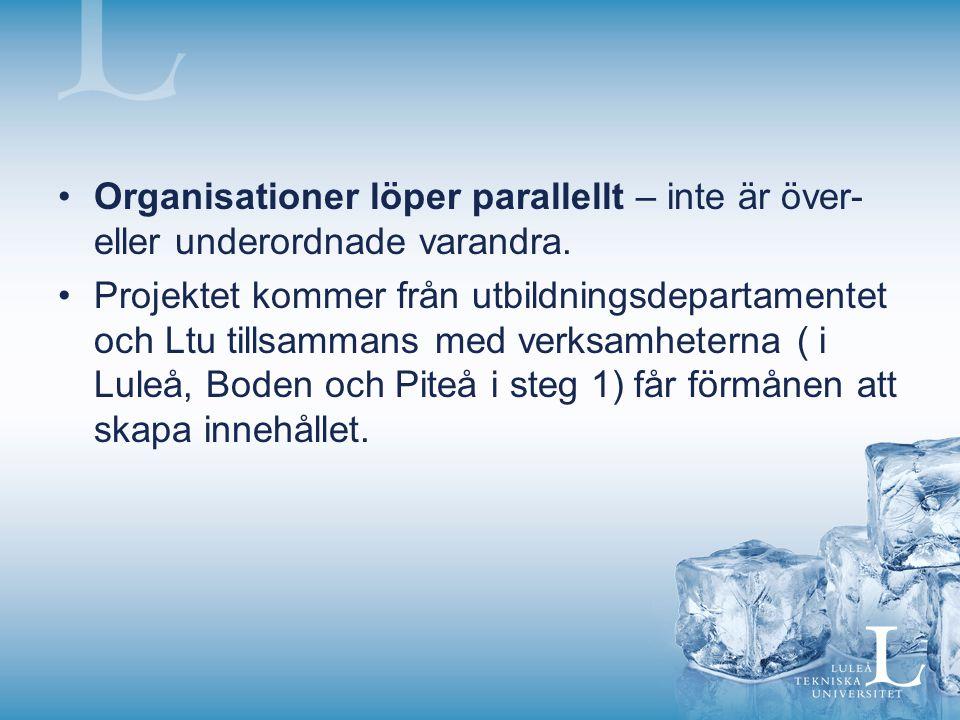 Organisationer löper parallellt – inte är över- eller underordnade varandra. Projektet kommer från utbildningsdepartamentet och Ltu tillsammans med ve