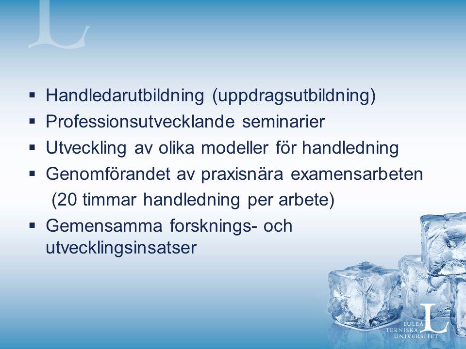  Handledarutbildning (uppdragsutbildning)  Professionsutvecklande seminarier  Utveckling av olika modeller för handledning  Genomförandet av praxi