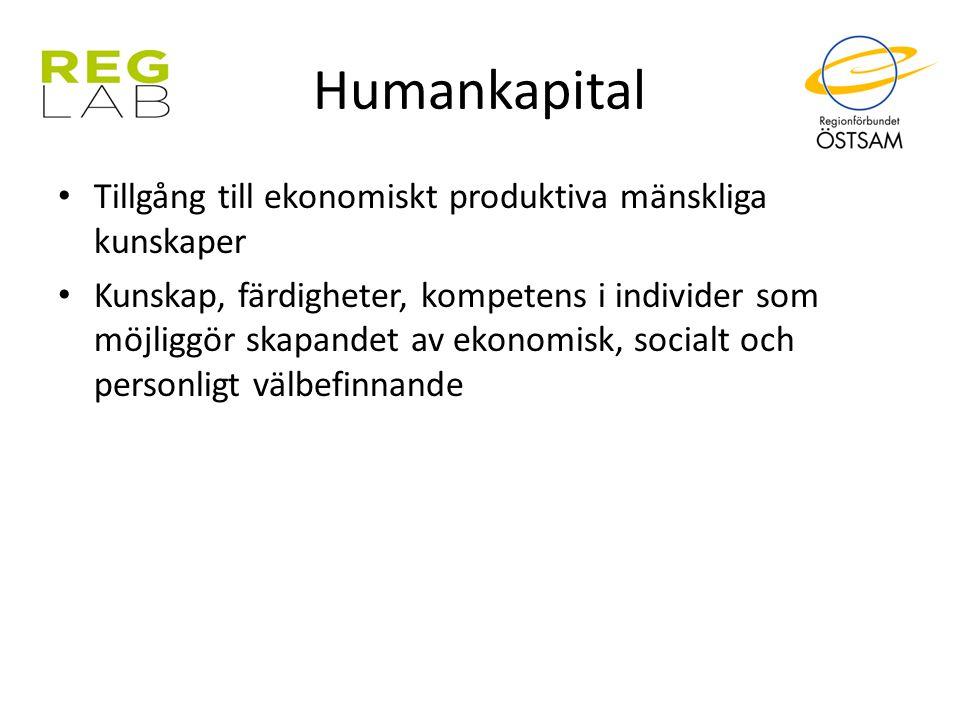 Humankapital Tillgång till ekonomiskt produktiva mänskliga kunskaper Kunskap, färdigheter, kompetens i individer som möjliggör skapandet av ekonomisk,