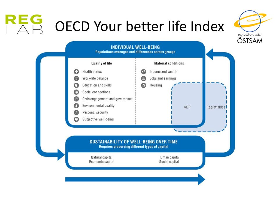 OECD Your better life Index
