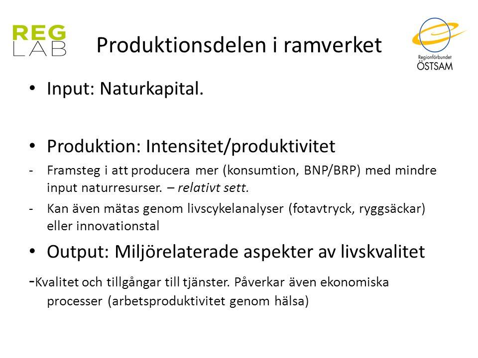 Produktionsdelen i ramverket Input: Naturkapital. Produktion: Intensitet/produktivitet -Framsteg i att producera mer (konsumtion, BNP/BRP) med mindre