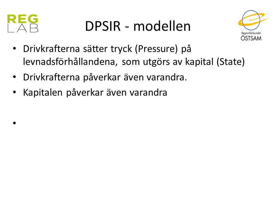 DPSIR - modellen Drivkrafterna sätter tryck (Pressure) på levnadsförhållandena, som utgörs av kapital (State) Drivkrafterna påverkar även varandra. Ka
