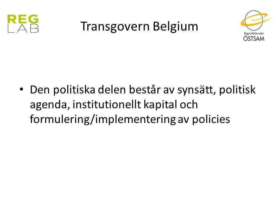 Transgovern Belgium Den politiska delen består av synsätt, politisk agenda, institutionellt kapital och formulering/implementering av policies
