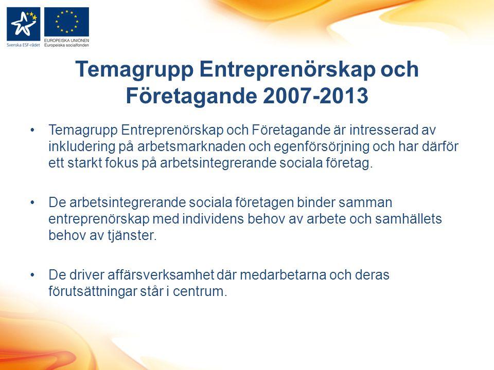 Temagrupp Entreprenörskap och Företagande 2007-2013 Temagrupp Entreprenörskap och Företagande är intresserad av inkludering på arbetsmarknaden och egenförsörjning och har därför ett starkt fokus på arbetsintegrerande sociala företag.