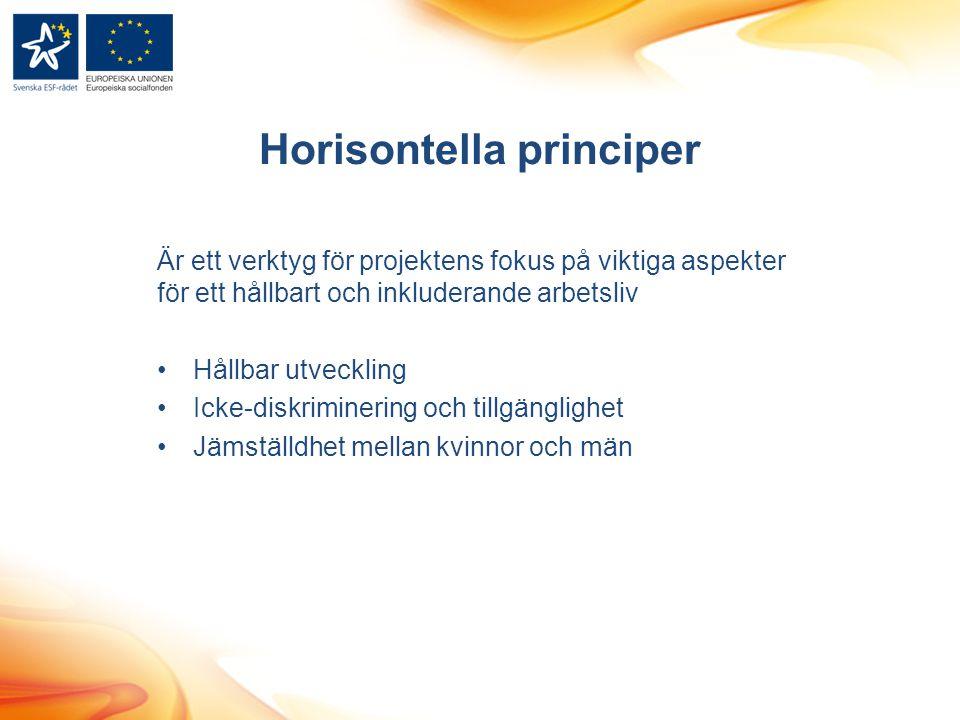 Horisontella principer Är ett verktyg för projektens fokus på viktiga aspekter för ett hållbart och inkluderande arbetsliv Hållbar utveckling Icke-diskriminering och tillgänglighet Jämställdhet mellan kvinnor och män
