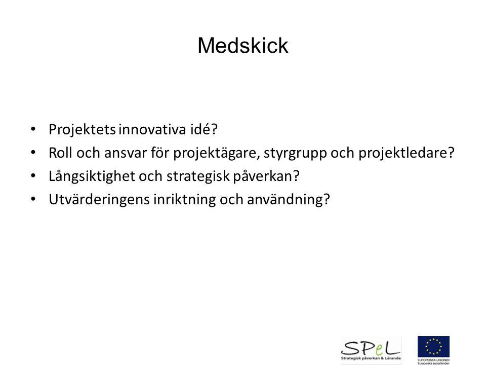 Medskick Projektets innovativa idé? Roll och ansvar för projektägare, styrgrupp och projektledare? Långsiktighet och strategisk påverkan? Utvärderinge