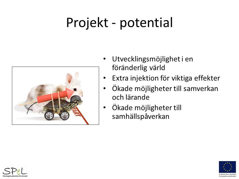 Projekt - potential Utvecklingsmöjlighet i en föränderlig värld Extra injektion för viktiga effekter Ökade möjligheter till samverkan och lärande Ökad