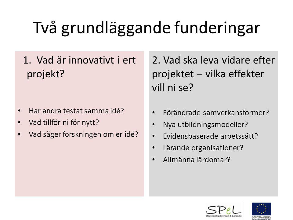 Medskick Projektets innovativa idé.Roll och ansvar för projektägare, styrgrupp och projektledare.