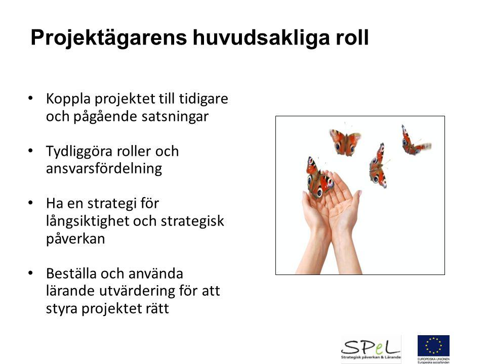Projektägarens huvudsakliga roll Koppla projektet till tidigare och pågående satsningar Tydliggöra roller och ansvarsfördelning Ha en strategi för lån