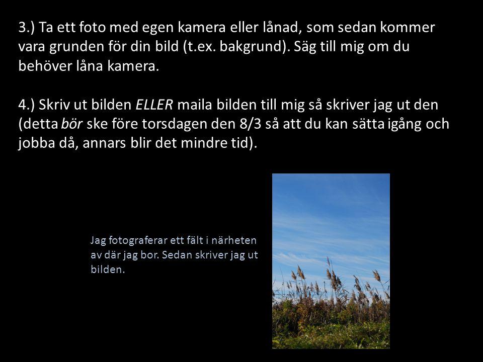 Jag fotograferar ett fält i närheten av där jag bor. Sedan skriver jag ut bilden. 3.) Ta ett foto med egen kamera eller lånad, som sedan kommer vara g