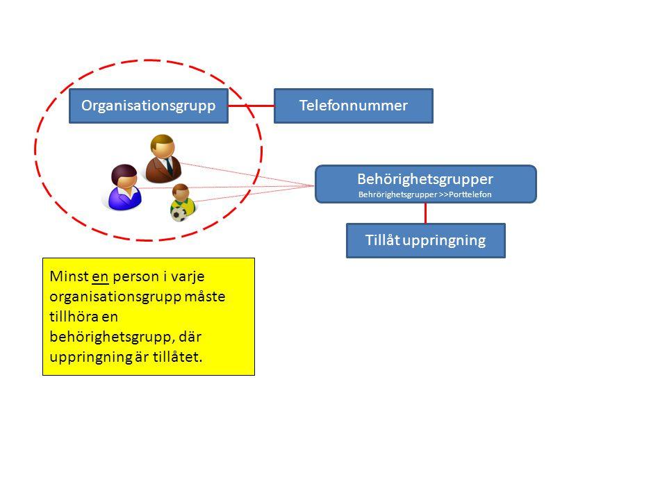 OrganisationsgruppTelefonnummer Tillåt uppringning Minst en person i varje organisationsgrupp måste tillhöra en behörighetsgrupp, där uppringning är t