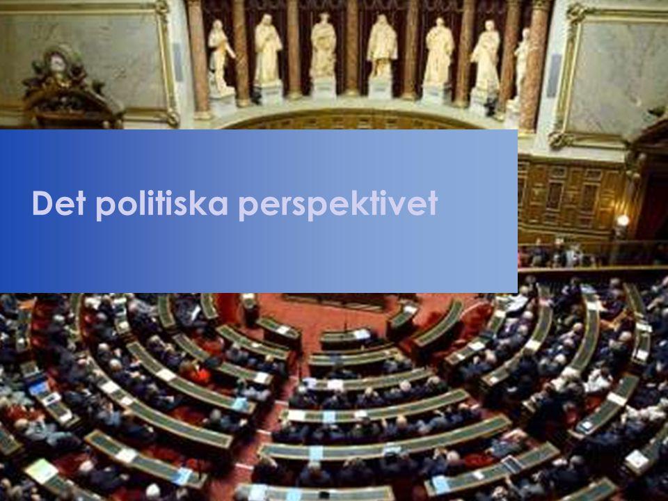 Det politiska perspektivet