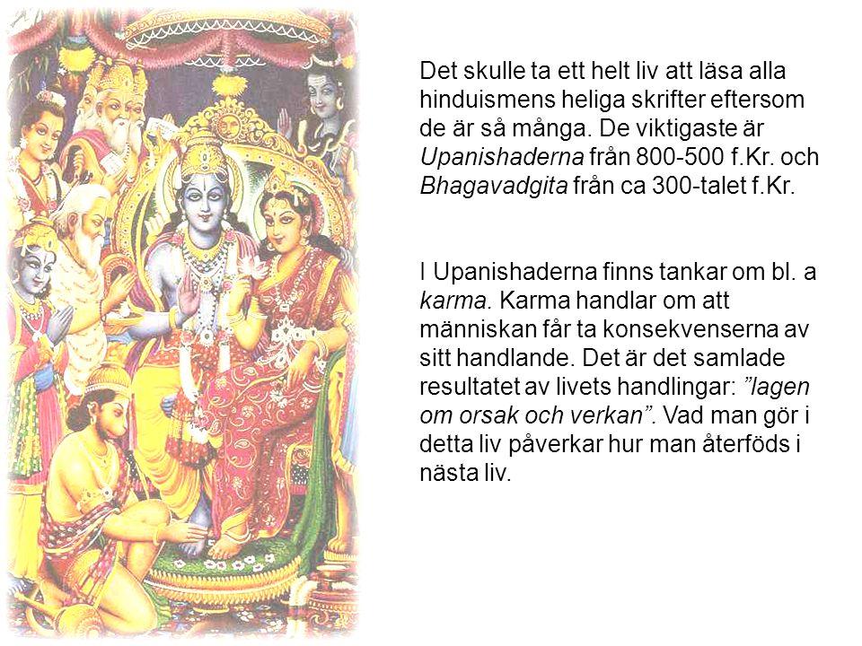 Det skulle ta ett helt liv att läsa alla hinduismens heliga skrifter eftersom de är så många.