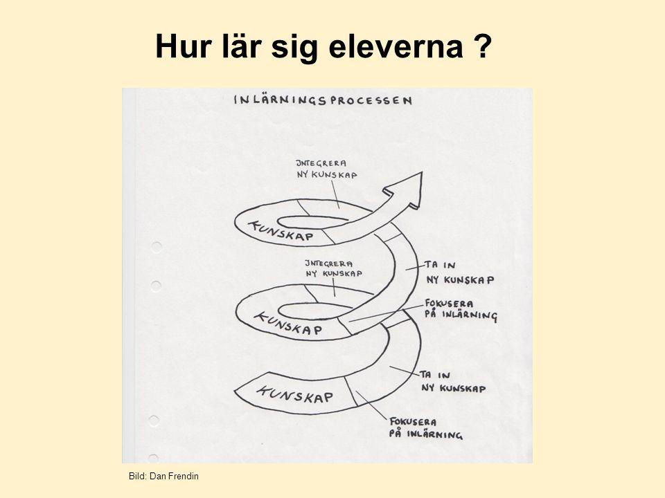 Hur lär sig eleverna ? Bild: Dan Frendin