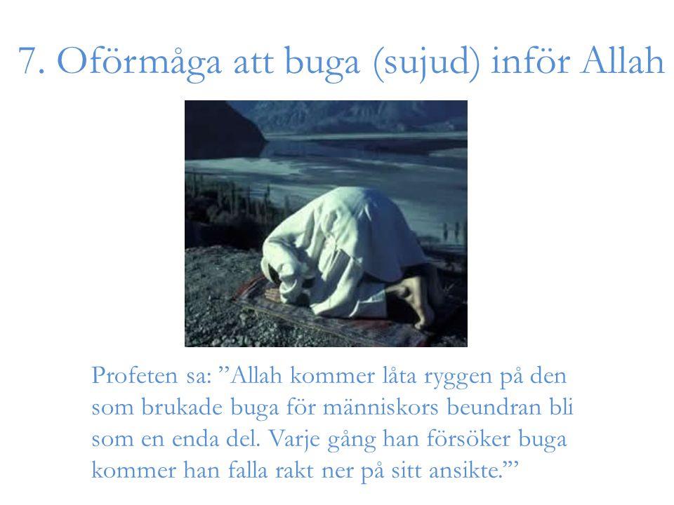 """7. Oförmåga att buga (sujud) inför Allah Profeten sa: """"Allah kommer låta ryggen på den som brukade buga för människors beundran bli som en enda del. V"""