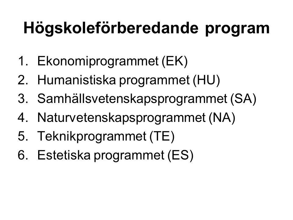 Högskoleförberedande program 1.Ekonomiprogrammet (EK) 2.Humanistiska programmet (HU) 3.Samhällsvetenskapsprogrammet (SA) 4.Naturvetenskapsprogrammet (NA) 5.Teknikprogrammet (TE) 6.Estetiska programmet (ES)