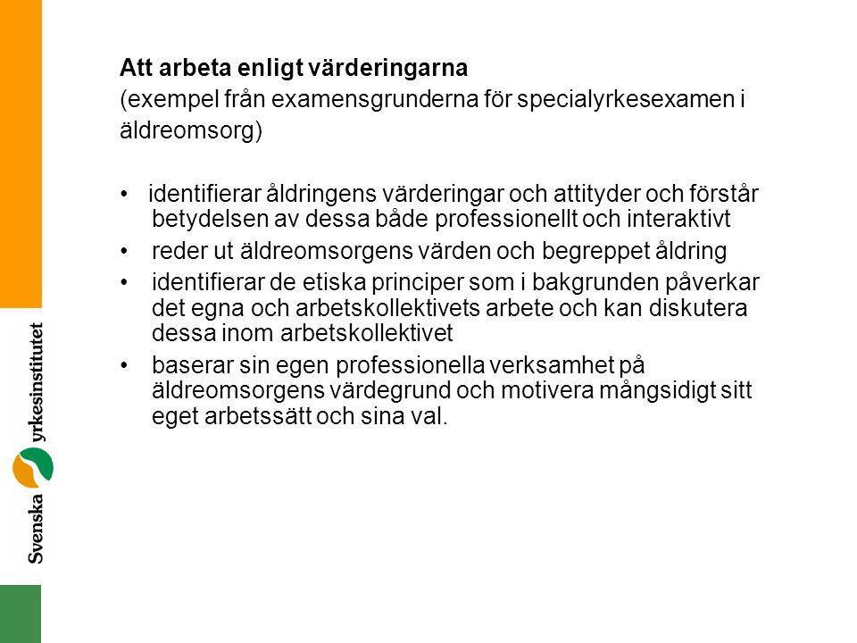 Exempel inom NORDPLUS VUXEN Mobilitet: NPV Färöarna (2006-2-MA- 102) NPV Vård i Västerbotten (2006-1-MA-101) NPV Vuxenpraktik Stockholm (2006-1-MC-101) NPV Bildkonst på Island (2006-2-MC-101) NPV Studiebesök: Vidarkliniken (2006-2-MA- 102) Nätverksprojekt: Lära av varandra (2004-1-SA- 103) Företagsamhet inom vården.