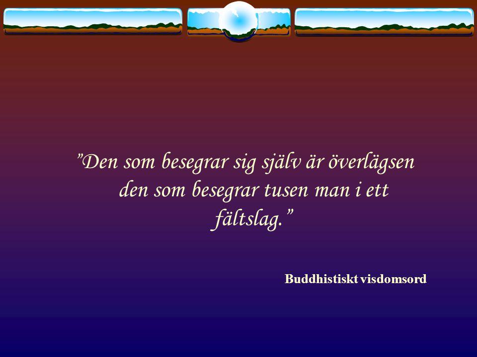 Den som besegrar sig själv är överlägsen den som besegrar tusen man i ett fältslag. Buddhistiskt visdomsord