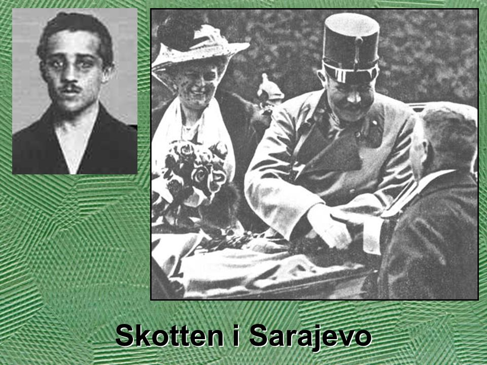 Den 28 juli f ö rklarade Ö sterrike-Ungern krig mot Serbien.