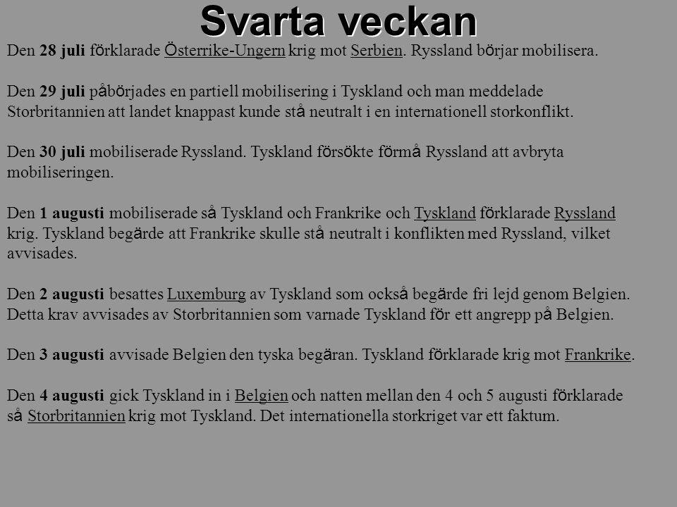 Den 28 juli f ö rklarade Ö sterrike-Ungern krig mot Serbien. Ryssland b ö rjar mobilisera. Den 29 juli p å b ö rjades en partiell mobilisering i Tyskl