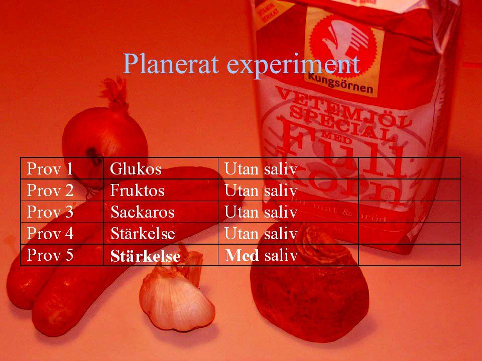 Planerat experiment