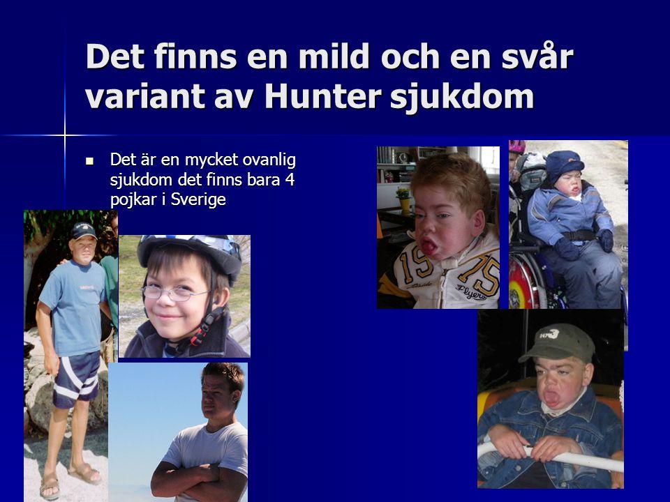 Det finns en mild och en svår variant av Hunter sjukdom Det är en mycket ovanlig sjukdom det finns bara 4 pojkar i Sverige Det är en mycket ovanlig sjukdom det finns bara 4 pojkar i Sverige