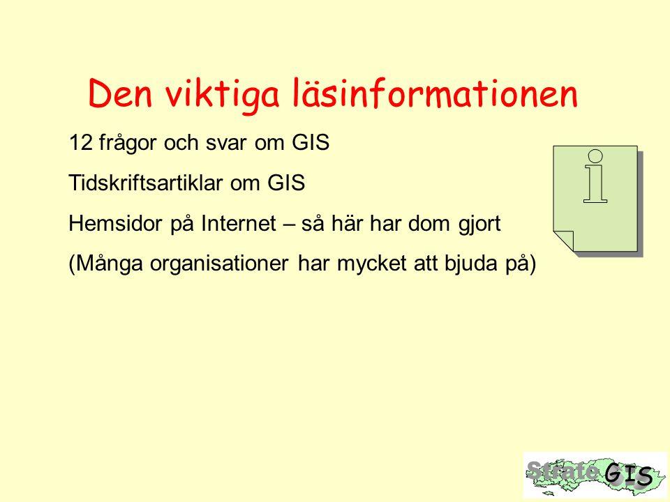 Den viktiga läsinformationen 12 frågor och svar om GIS Tidskriftsartiklar om GIS Hemsidor på Internet – så här har dom gjort (Många organisationer har