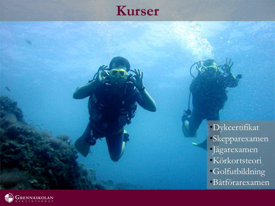 Kurser Dykcertifikat Skepparexamen Jägarexamen Körkortsteori Golfutbildning Båtförarexamen