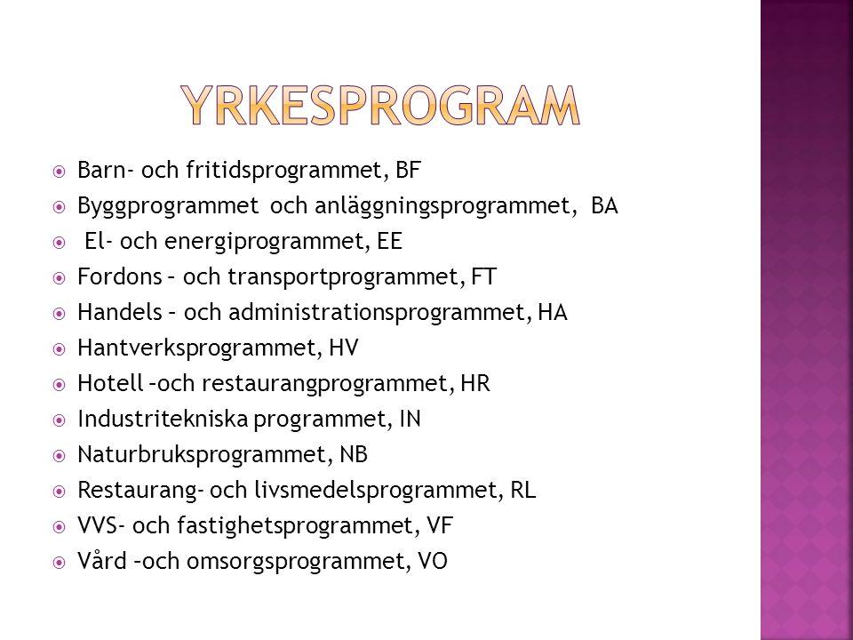  Barn- och fritidsprogrammet, BF  Byggprogrammet och anläggningsprogrammet, BA  El- och energiprogrammet, EE  Fordons – och transportprogrammet, FT  Handels – och administrationsprogrammet, HA  Hantverksprogrammet, HV  Hotell –och restaurangprogrammet, HR  Industritekniska programmet, IN  Naturbruksprogrammet, NB  Restaurang- och livsmedelsprogrammet, RL  VVS- och fastighetsprogrammet, VF  Vård –och omsorgsprogrammet, VO
