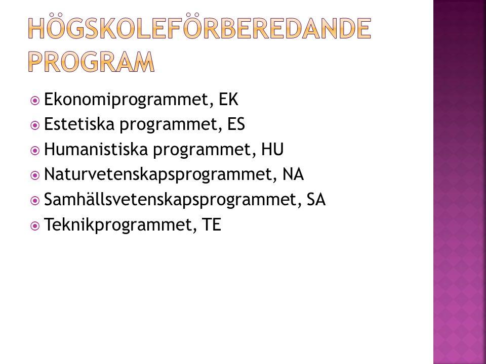  Ekonomiprogrammet, EK  Estetiska programmet, ES  Humanistiska programmet, HU  Naturvetenskapsprogrammet, NA  Samhällsvetenskapsprogrammet, SA  Teknikprogrammet, TE
