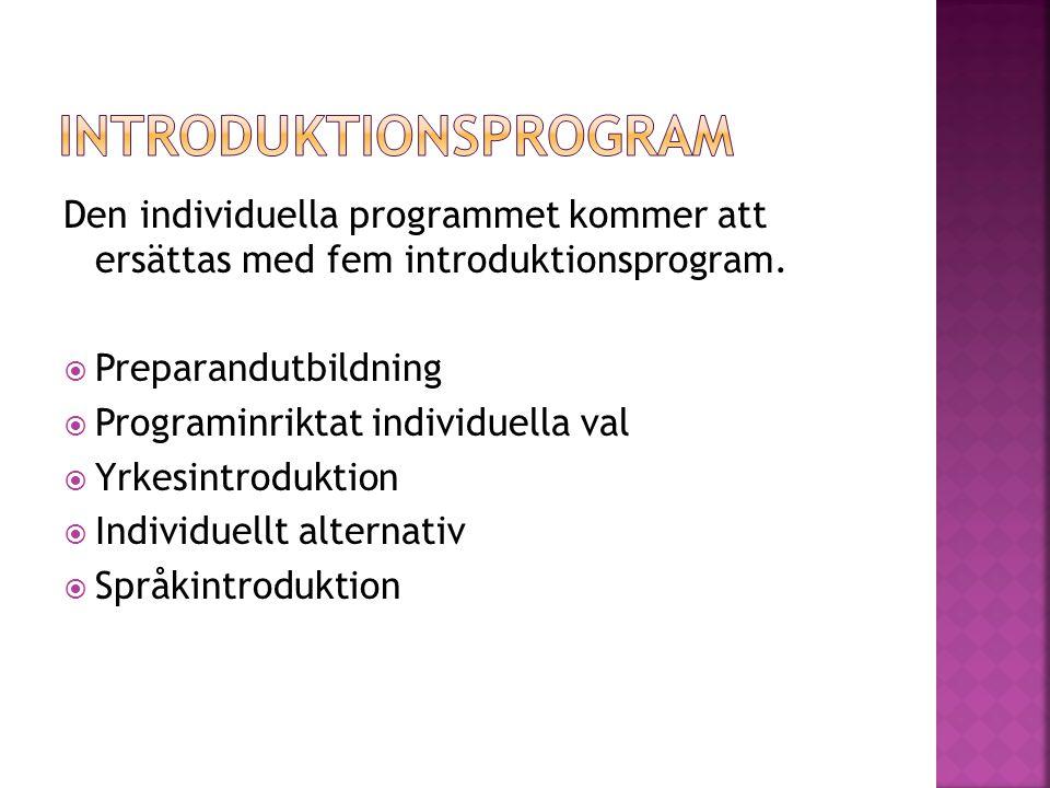 Den individuella programmet kommer att ersättas med fem introduktionsprogram.  Preparandutbildning  Programinriktat individuella val  Yrkesintroduk