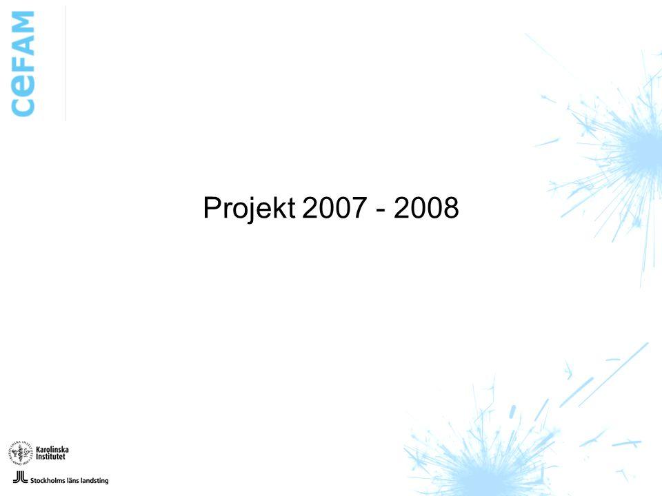 Projekt 2007 - 2008