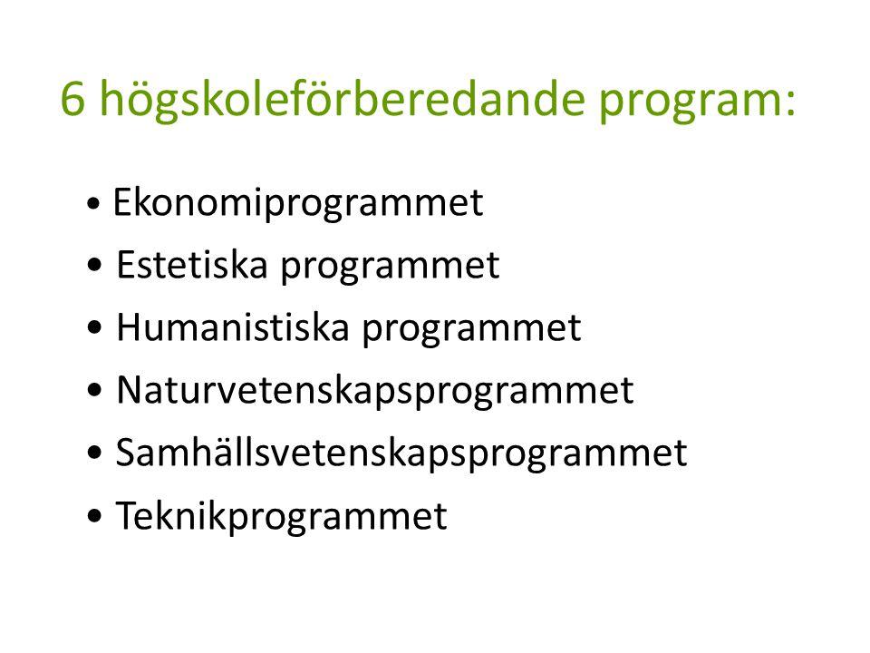 6 högskoleförberedande program: Ekonomiprogrammet Estetiska programmet Humanistiska programmet Naturvetenskapsprogrammet Samhällsvetenskapsprogrammet Teknikprogrammet
