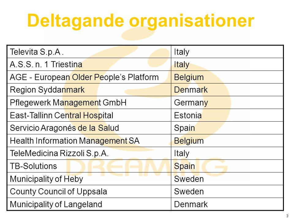 3 Deltagande organisationer Televita S.p.A.Italy A.S.S. n. 1 TriestinaItaly AGE - European Older People's PlatformBelgium Region SyddanmarkDenmark Pfl