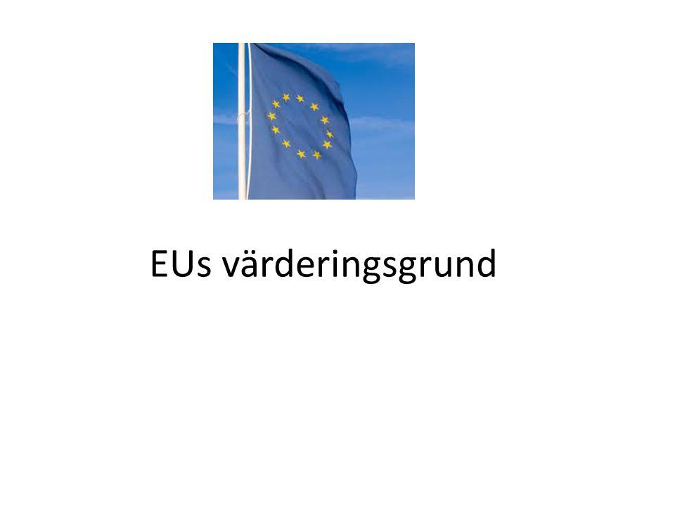 EUs värderingsgrund
