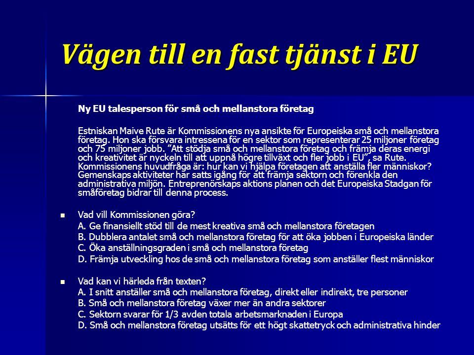 Vägen till en fast tjänst i EU Ny EU talesperson för små och mellanstora företag Estniskan Maive Rute är Kommissionens nya ansikte för Europeiska små och mellanstora företag.