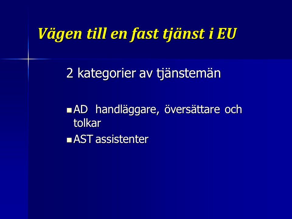 Vägen till en fast tjänst i EU Översättare och tolkar För översättare eller tolkar bedöms specifika färdigheter i två test: För översättare eller tolkar bedöms specifika färdigheter i två test: Praktiska språktest Praktiska språktest Strukturerad intervju Strukturerad intervju