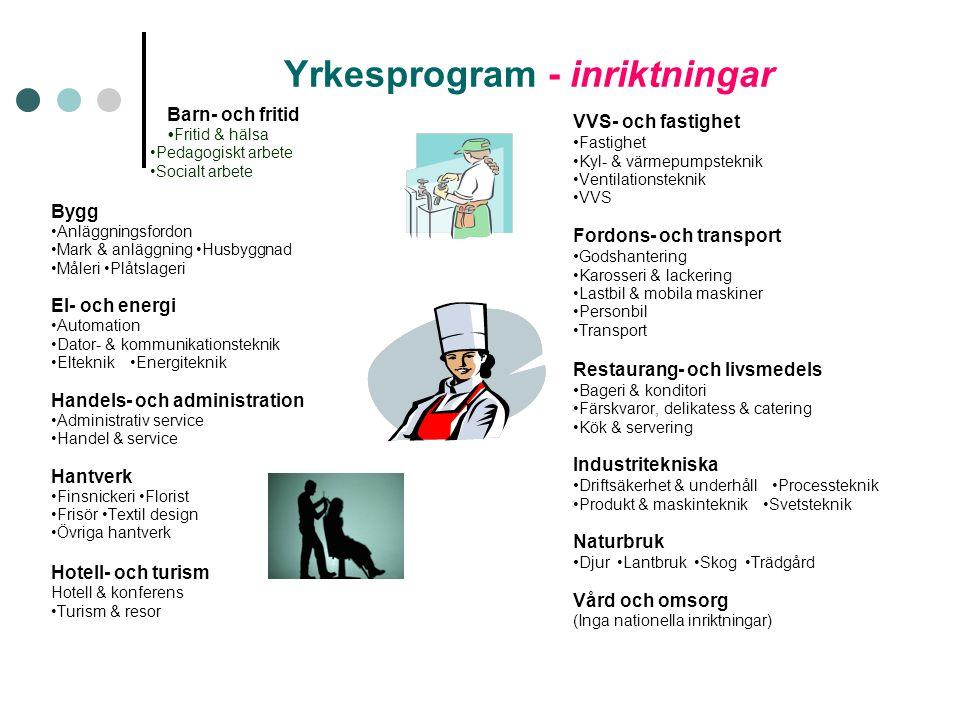 Yrkesprogram - inriktningar Barn- och fritid Fritid & hälsa Pedagogiskt arbete Socialt arbete Bygg Anläggningsfordon Mark & anläggning Husbyggnad Måle