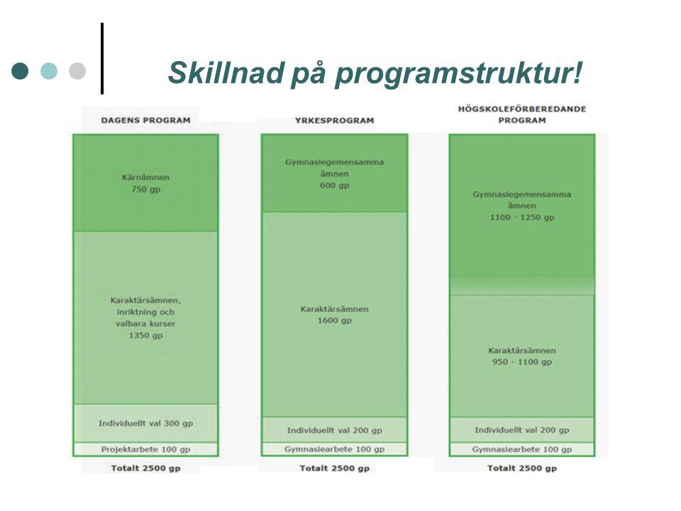 Skillnad på programstruktur!