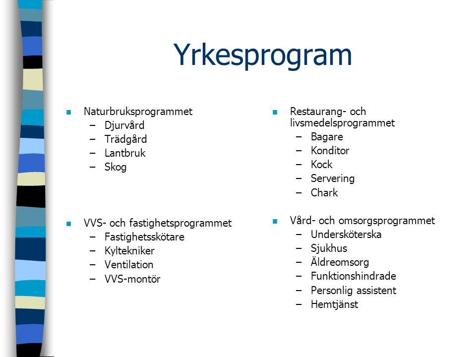 Yrkesprogram n Naturbruksprogrammet –Djurvård –Trädgård –Lantbruk –Skog n VVS- och fastighetsprogrammet –Fastighetsskötare –Kyltekniker –Ventilation –