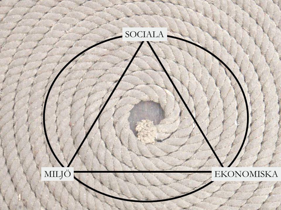 EKONOMISKA MILJÖ SOCIALA Ekonomiska  Investeringar  Lön- och bonussystem  Struktur och ledningssystem  Vinst