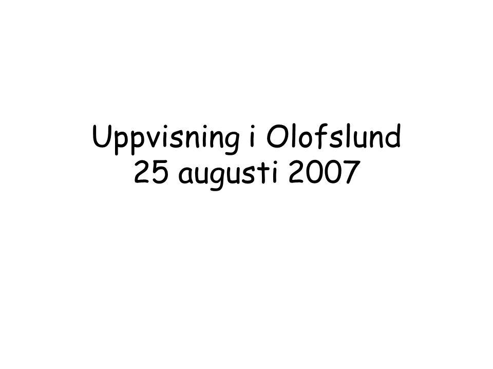 Uppvisning i Olofslund 25 augusti 2007