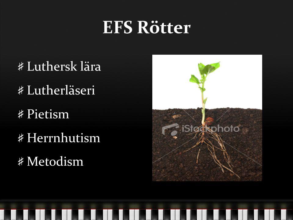 EFS Rötter Luthersk lära Lutherläseri Pietism Herrnhutism Metodism