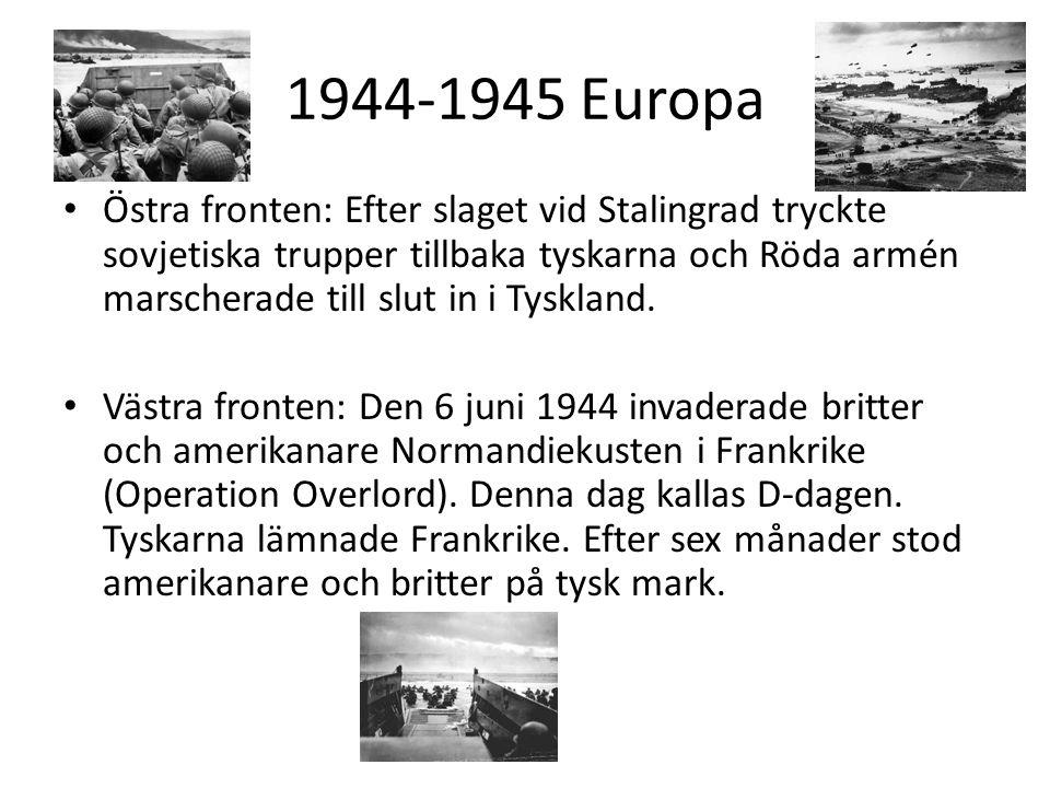 1944-1945 Europa Östra fronten: Efter slaget vid Stalingrad tryckte sovjetiska trupper tillbaka tyskarna och Röda armén marscherade till slut in i Tyskland.
