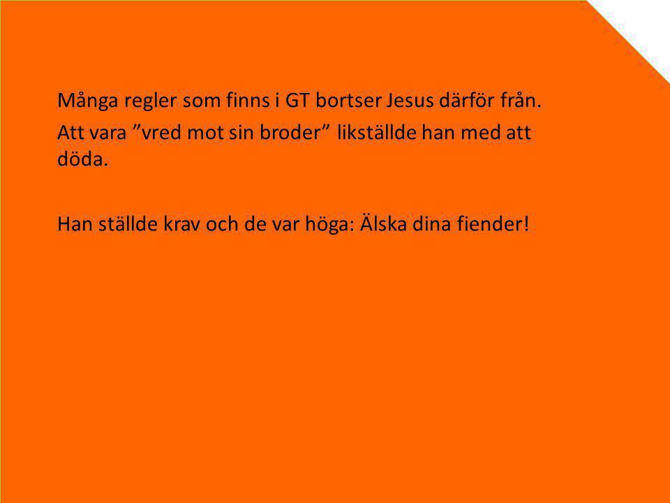 """Många regler som finns i GT bortser Jesus därför från. Att vara """"vred mot sin broder"""" likställde han med att döda. Han ställde krav och de var höga: Ä"""