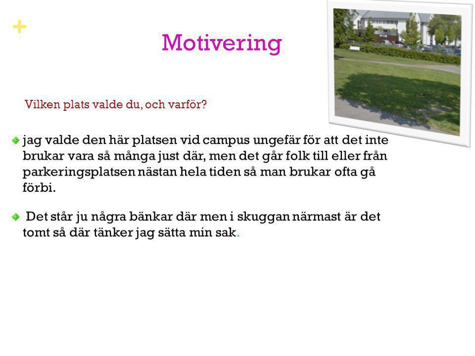+ Motivering Vilken plats valde du, och varför?