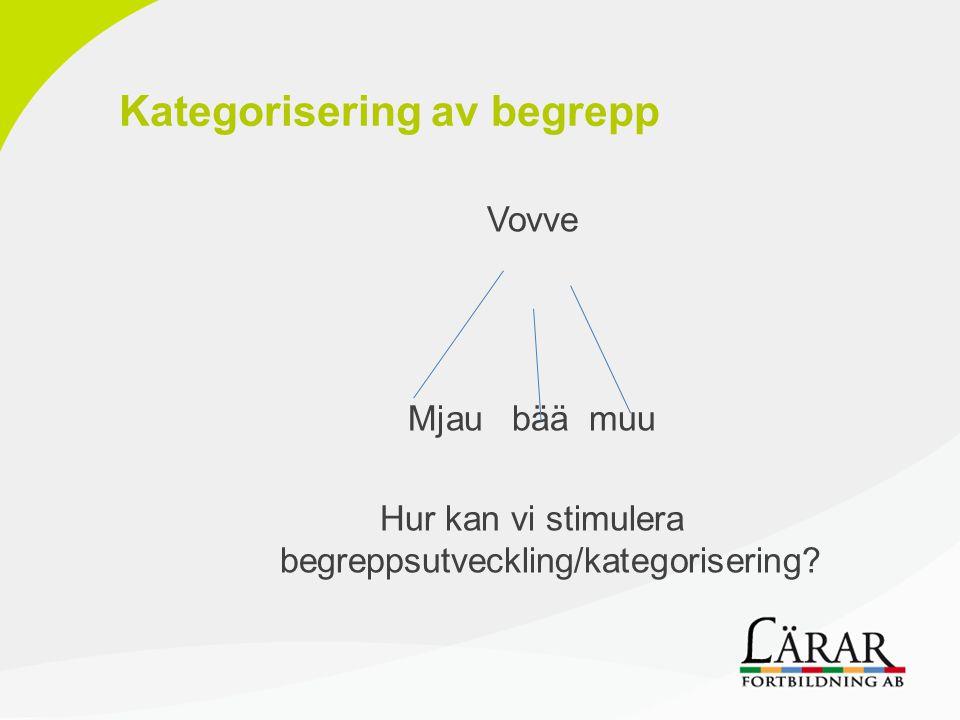 Kategorisering av begrepp Vovve Mjau bää muu Hur kan vi stimulera begreppsutveckling/kategorisering?