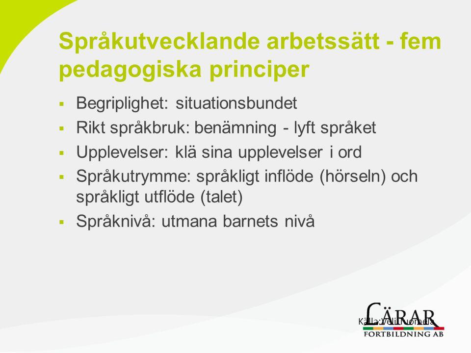 Språkutvecklande arbetssätt - fem pedagogiska principer  Begriplighet: situationsbundet  Rikt språkbruk: benämning - lyft språket  Upplevelser: klä