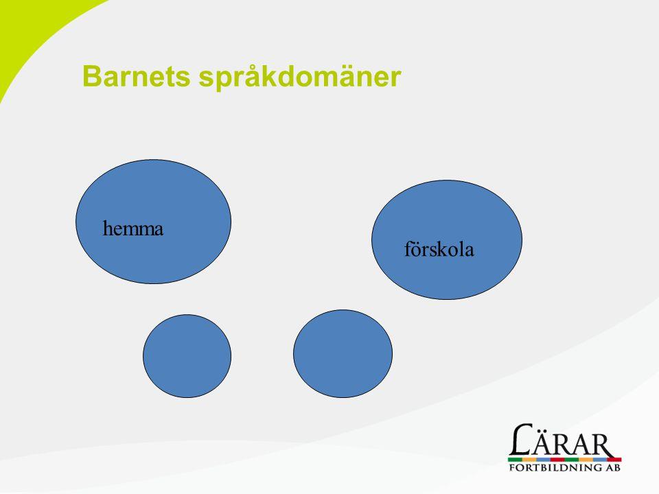 Språkutveckling/lärande  Regelsystem  Språkberget  Piaget