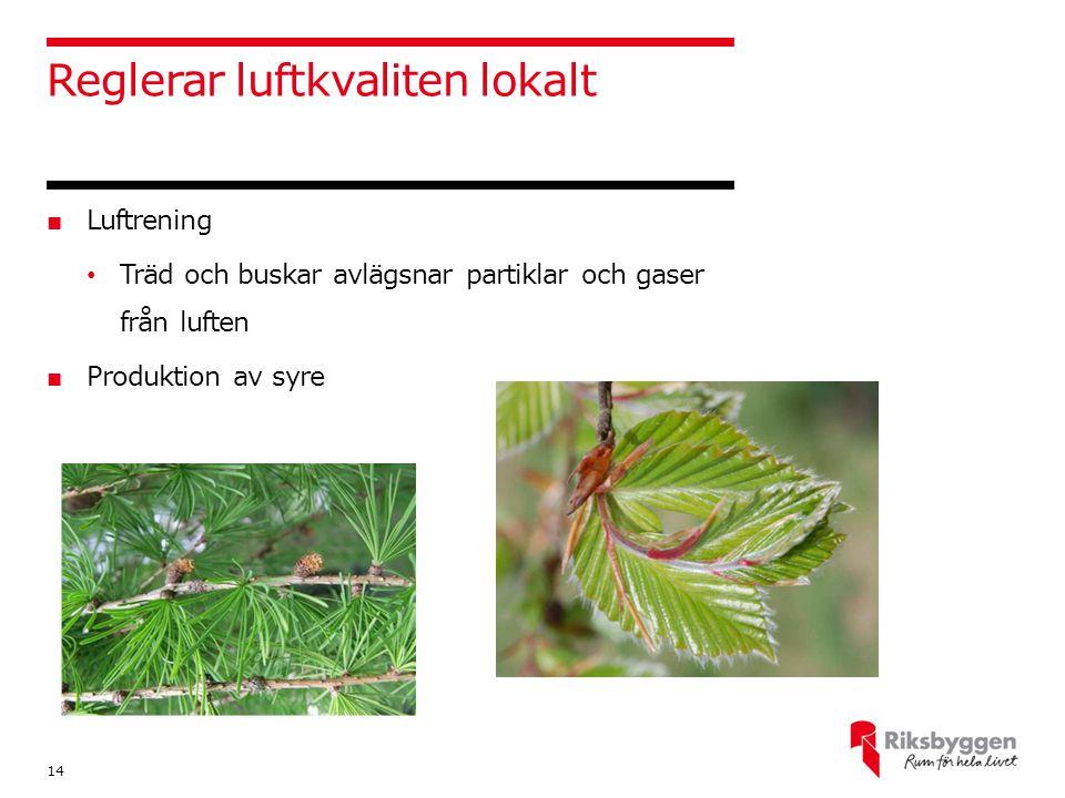 Reglerar luftkvaliten lokalt ■ Luftrening Träd och buskar avlägsnar partiklar och gaser från luften ■ Produktion av syre 14